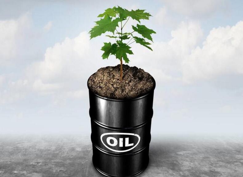 原油在线直播可以学习哪方面的知识?